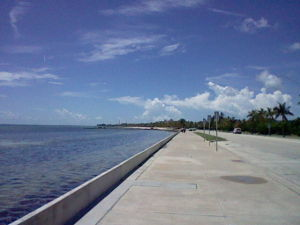 The Southern coast of Key West