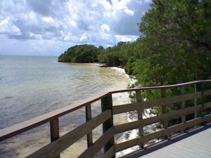 The small Anne's Beach on the island of Islamorada